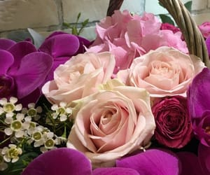 beautiful, цветы, and для девушки image