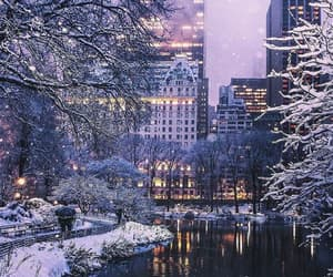 Central Park, christmas, and city image