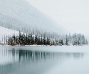 nature, snow, and winter wonderland image