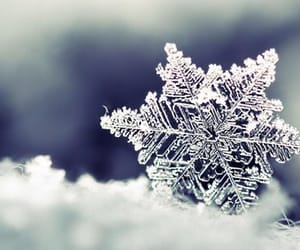 gorgeous, snowflake, and winter image