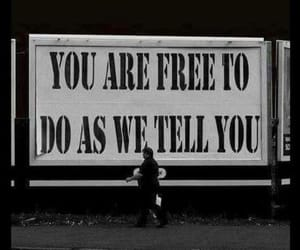 black and white, freedom, and quotes image