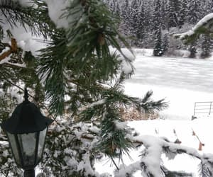 inspiration, nature, and snow image