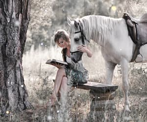 book, fairytale, and fantasy image