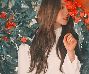 aesthetic, girls, and exo image