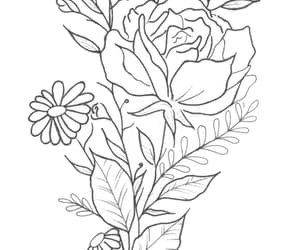 draw, marguerites, and roses image