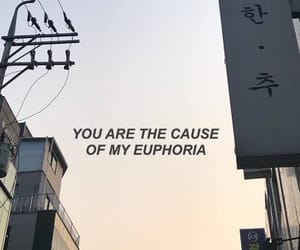 aesthetic, euphoria, and happy image