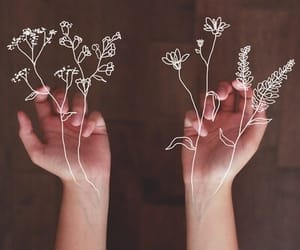 flowers, hands, and art image