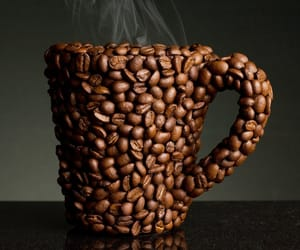 cup, photo, and pictures image