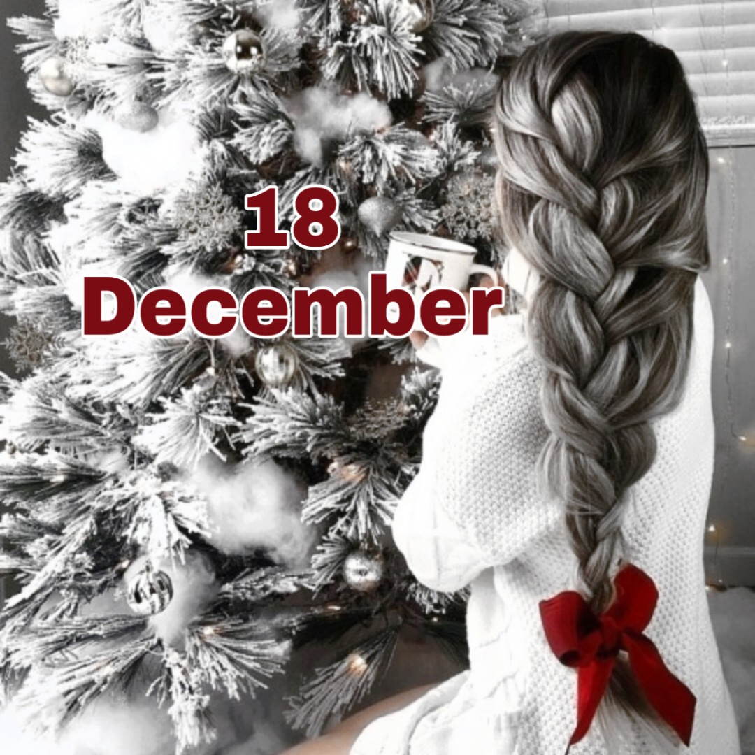 article, braid, and christmas image
