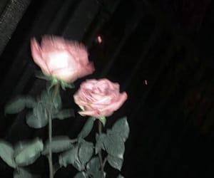 flower, grunge, and rose image