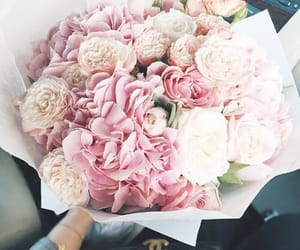 bloom, florals, and sopretty image