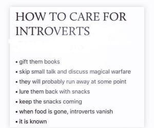 affection, care, and introverts image