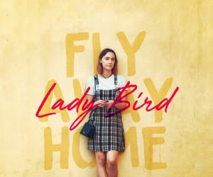ladybird and wallpaper image