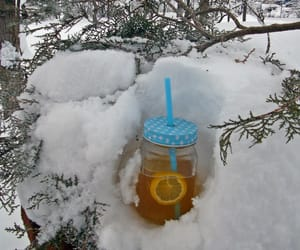 snow, tea, and winter image