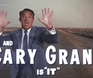 cary grant, gif, and north by northwest image