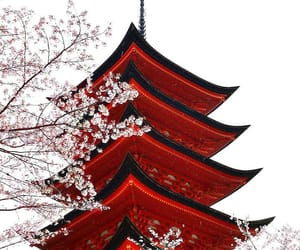 japan, travel, and red image