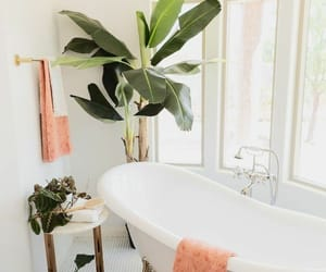 bath and banheiros image