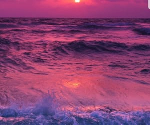 purple, sea, and wallpapers image