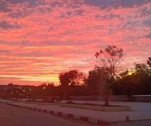 sun, Algeria, and city image