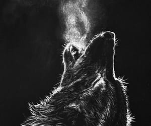 aesthetic, weheartit, and wolf image