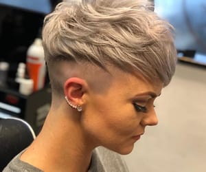 ideas, pixie, and shorthair image
