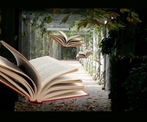 book, books, and quirky image