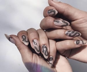 nails, snake, and snakes image