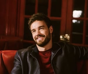 beard, red, and liam payne image
