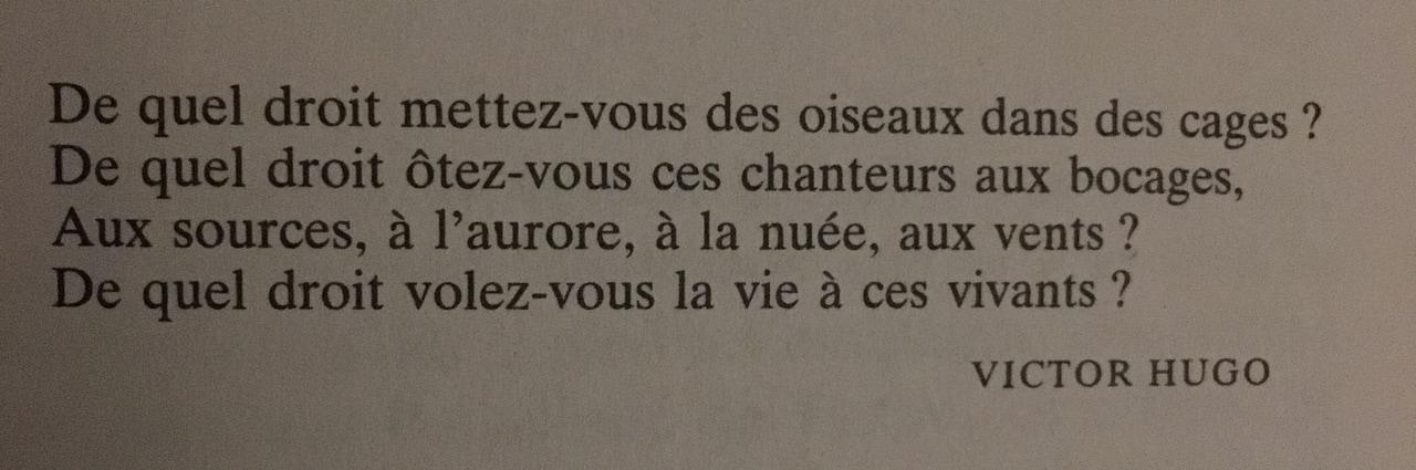 Citation De Victor Hugo écrite Au Début Du Livre Cannibale