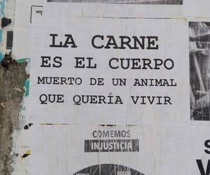 Animales, revolution, and veggie image