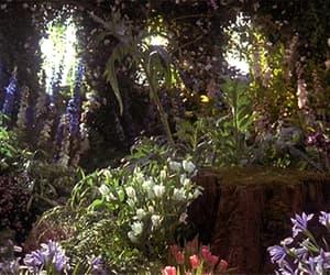 fairy, fairytale, and garden image