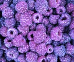 purple and frambuesas image