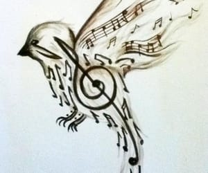 art, music notes, and birds image