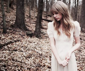Taylor Swift, safe and sound, and Swift image