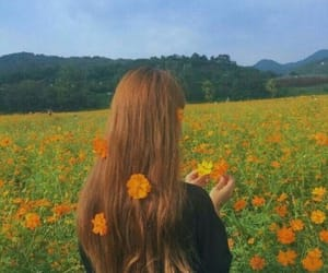 flowers, orange, and hair image