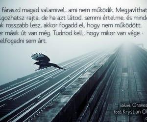 Image by Sándor Lászlóné Nagy