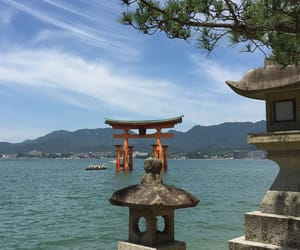 asia, japan, and shrine image