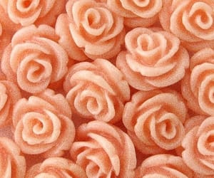 peach, aesthetic, and rose image