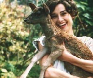 audrey hepburn, deer, and vintage image