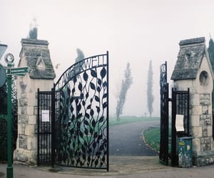 vintage, cemetery, and fog image