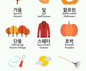 autumn, languages, and vocabulary image