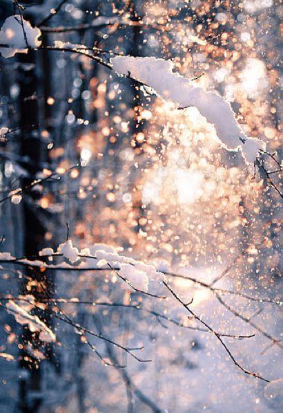 Winter Beauty Uploaded By Iza On We Heart It