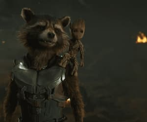 friendship, gif, and rocket raccoon image