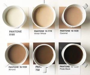 coffee, brown, and pantone image