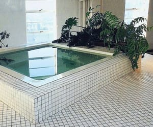 pale, plants, and pool image