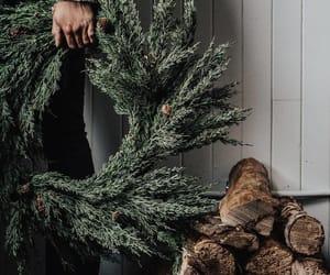 winter, christmas, and tree image