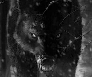 angst, schwarz, and black image