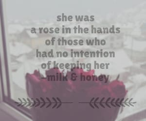 her, roses, and winter image