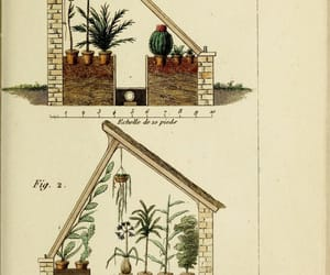 gardening, greenhouse, and illustrations image