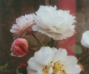 grunge, vintage, and flowers image